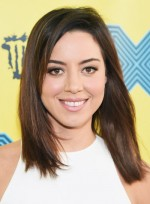 file_3292_Aubrey-Plaza-Medium-Straight-Brunette-Party-Hairstyle