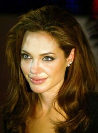 file_3737_angelina-jolie-long-wavy-275