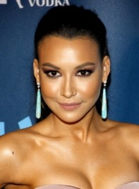 file_4025_naya-rivera-long-brunette-wavy-ponytail-hairstyle-275