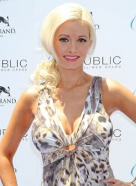 file_4047_holly-madison-ponytail-sophisticated-blonde-275