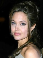 file_4297_angelina-jolie-long-half-updo