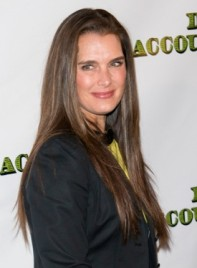 file_59147_brooke-shields-long-straight-sophisticated-brunette-hairstyle-275