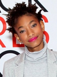 file_59405_Willow-Smith-Short-Black-Edgy-Hairstyle-Braids-Twists_-275