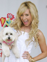 file_10_8401_celebs-who-look-like-their-dogs-ashley-tisdale-09