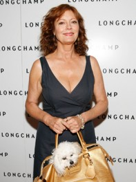 file_15_8401_celebs-who-look-like-their-dogs-susan-sarandon-14