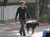 file_23_8401_celebs-who-look-like-their-dogs-orlando-bloom-03