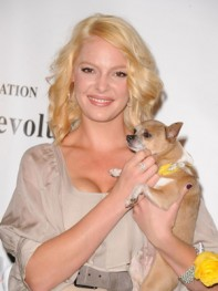 file_27_8401_celebs-who-look-like-their-dogs-katherine-heigl-07