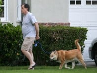 file_5_8401_celebs-who-look-like-their-dogs-chris-noth-04