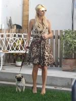 file_79_8401_celebs-who-look-like-their-dogs-paris-hilton-02
