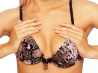 file_8_9861_bra-fitting-07
