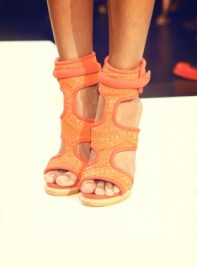 file_11391_NYFW-shoe-candy-2012-thumb-275