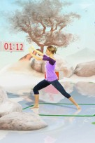 file_38_13961_heart-pumping-video-game-Your-Shape--Fitness-Evolved