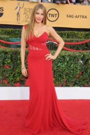 file_13_14451_sag-awards-sofia-vergara