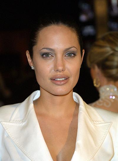 Angelina Jolie Chic Updo