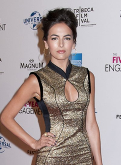 Camilla Belle's Formal, Chic, Brunette, Updo Hairstyle