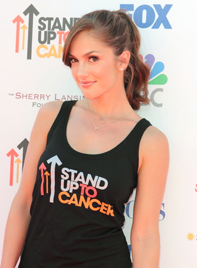 Minka Kelly's Wavy, Party, Brunette, Ponytail Hairstyle